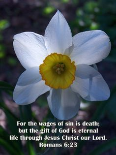Image result for Romans 6:21