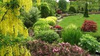 Realizace zahrady - Kopřivnice Garden Inspiration, Plants, Gardening, 3d, Gardens, Garden Hedges, Lawn And Garden, Plant, Planets