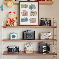 Cameras print by What Katie Does, via Flickr