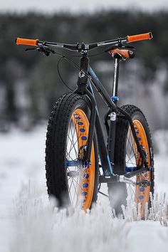 I want. and I don't know why. Approved. I'd ride it on sand-probably never snow!