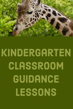 Kindergarten is a Zoo! Go through a year of classroom guidance lessons with your Kindergarten classes. Guidance Lessons, School Counselor, Kindergarten Classroom, Early Childhood, Counseling, Student, Ideas, Corner, Infancy