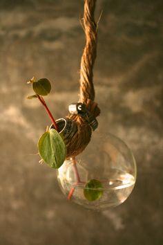 Shabby Chic Decor Hanging Lightbulb Vase Glass Vase Cottage Style - Rustic Rope Design. $24.00, via Etsy.