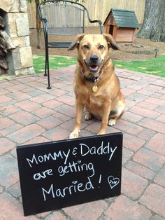 Sadie is so happy her mom and dad are getting married