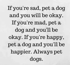 Baby Puppies, Baby Dogs, Pet Dogs, Pets, Doggies, Paw Print Art, Miss My Dog, Puppy Face, Dog Rules