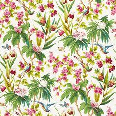 Seychelles | 175701 in Ivory | Schumacher Fabric