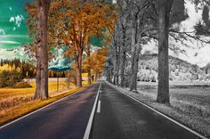 Allee Straße in Deutschland Photography Photos, Country Roads, Explore, Germany, Exploring