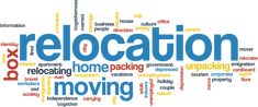 Are you planning to move your office to the new location? Are you moving your house to the new area? If your answer is yes to any of the two questions then you must call: 1800 931 833 Packing Companies, Vinyl Mini Blinds, Office Relocation, Moving Home, Packers And Movers, Moving Services, Vacation Packing, Workplace, Melbourne