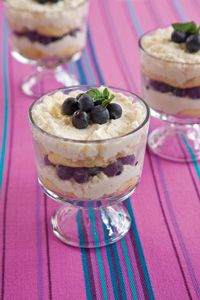 ✯ Paula Deen Lime Blueberry Tiramisu