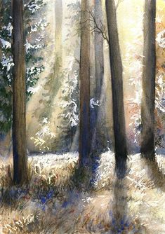 November   ORIGINAL WATERCOLOR PAINTING forest landscape with