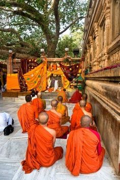 Monks praying under the bodhy-tree, Mahabodhy Temple, Bodhgaya, India