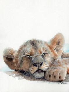 This sweet sleeping baby lion Original Watercolor art is the perfect decorative addition for a child Lion Wall Art, Lion Art, Watercolor Lion, Watercolor Animals, Watercolor Painting, Lion Painting, Baby Painting, Jungle Animals, Baby Animals