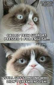 (legitimately grumpy this time!) - Grumpy Cat - Ideas of Grumpy Cat - Grumpy Cat . (legitimately grumpy this time!) The post Grumpy Cat . (legitimately grumpy this time!) appeared first on Cat Gig. Grumpy Cat Quotes, Funny Grumpy Cat Memes, Funny Cats, Funny Animals, Funny Memes, Memes Humor, Funny Quotes, Silly Jokes, Silly Cats