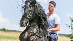 divoke kone dobrik
