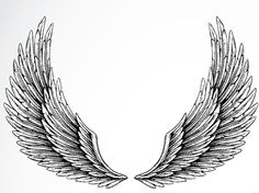 Like this style of drawn wings