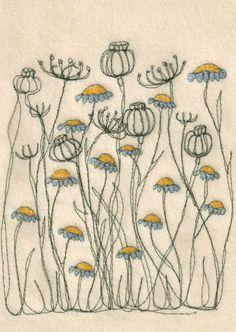 Carte postale pavot - & - daisy