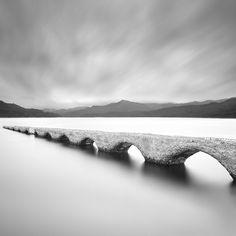 The forbiden bridge