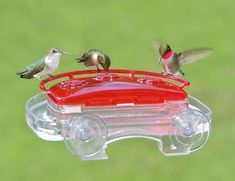 Jewel Box Window Hummingbird Feeder  Includes a detachable ant moat. 3 feeding stations. Hinged lid allows easy nectar filling and cleaning, $26.00