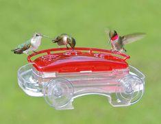 62 Best Hummingbird Gifts images in 2019 | Hummingbird