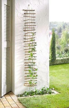 Ladder for climbing plants -- even vegetables! Would work for patio and container gardening too.
