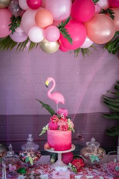 Flamingo Party - Low Res by Megann Evans Photography