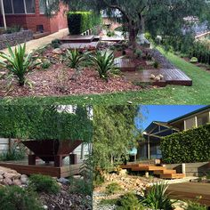 Poppy's Landscape Construction Service at Poppy's Home and Garden Newcastle Dream Garden, Home And Garden, Privacy Fence Landscaping, Gabion Wall, Outside Room, Construction Services, Garden Architecture, Native Plants, Design Projects