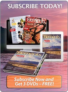 Get Great at Elements!