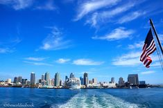 Whale Watching Adventures in San Diego