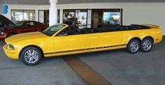 What the??!? Mustang convertible limo?? Wonder how fast it goes..