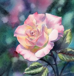 Floral Watercolor Paintings | PALE PINK ROSE (SOLD) floral watercolor painting