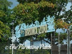 Family Fun in New York City: The Bronx Zoo