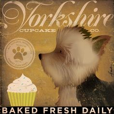 Hey, I found this really awesome Etsy listing at http://www.etsy.com/listing/49321229/yorkshire-cupcake-company-yorkie