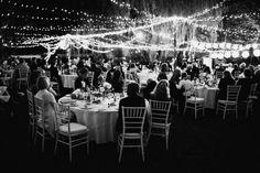 Montrose berry farm reception