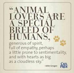 """""""Los amantes de los animales son una """"raza especial"""" de humanos, generosos de espíritu, llenos de empatía, tal vez un poco propensos a ser sentimental y con un corazón tan grande como un cielo despejado""""-John Crogan #animales #mascotas"""