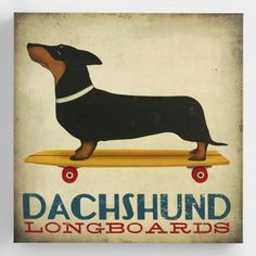 Designed to capture the rustic charm of New England, Ryan Fowler's distinctive illustrations - like this one of a dignified dachshund riding a longboard - add whimsy to any wall. | via World Market