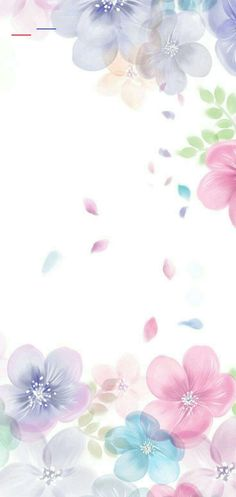 Wallpaper Iphone Pastell, Flowery Wallpaper, Flower Background Wallpaper, Flower Phone Wallpaper, Framed Wallpaper, Wallpaper Iphone Cute, Flower Backgrounds, Aesthetic Iphone Wallpaper, Cellphone Wallpaper