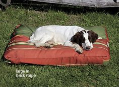 WaterShed Outdoor Bed