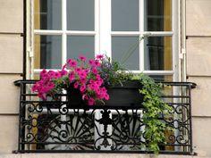 Spend a few weeks in Paris