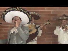 Mariachis en bogota para celebraciones de reuniones sociales, empresariales o familiares, excelente presentacion.  Todas las presentaciones tienen un nivel de respeto y calidad humana reciba un cordial saludo del mariachi vargas de Bogota desde Colombia