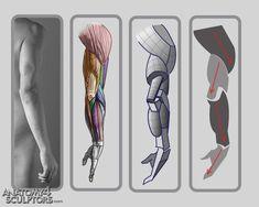 Fotos de Anatomy 4 sculptors