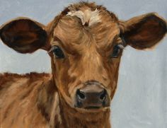 """New Work Baby Calf """"Bright Eyes"""" by denise rich Oil ~ x Minature Cows, Animal Paintings, Animal Drawings, Cow Drawing, Baby Cows, Baby Elephants, Cow Pictures, Cow Painting, Cow Art"""