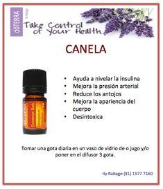 Usos del aceite esencial de Canela. DoTERRA