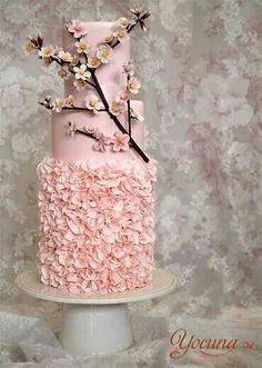 Very pretty pink cylindrical tiered wedding cake with ruffling and a cherry blossom branch.  Very pretty.  ᘡղbᘠ