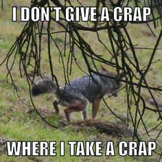 Let It...No! | GoneCatawampus.com