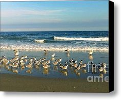 Limited Time Promotion: Beach Party Stretched Canvas Print