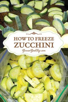 Are you sick of Zucchini yet? After you have baked, sautéed, stuffed, and grilled about as much as you can stand, here are three ways to preserve zucchini so you can enjoy the summer harvest bounty over the winter months. Freezing Vegetables, Frozen Vegetables, Fruits And Veggies, Freezing Fruit, Freezing Green Beans, Freezing Soup, Zucchini Zoodles, Zucchini Bread, Healthy Recipes