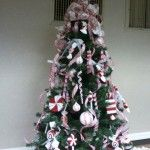 Candycane Peppermint Tree