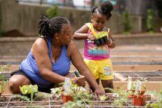 New Garden in the Bronx 'Creates a Community' - WSJ