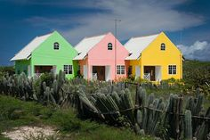 Colorful Curacao Houses