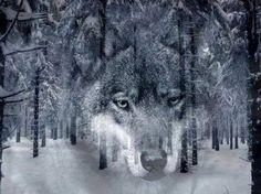 Spirit Wolf in the Forest.