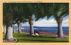 """""""A Brief History of Palm Trees in Southern California"""" 